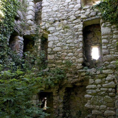 Clonmines Before Conservation 047