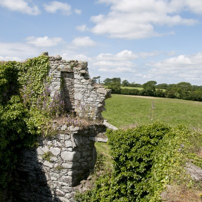 Clonmines Before Conservation 053