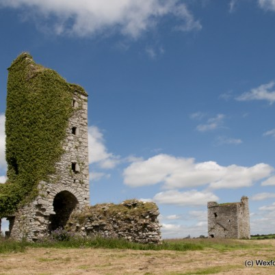 Clonmines Before Conservation 063