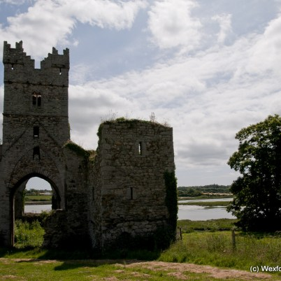 Clonmines Before Conservation 080
