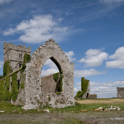 Clonmines Before Conservation 119