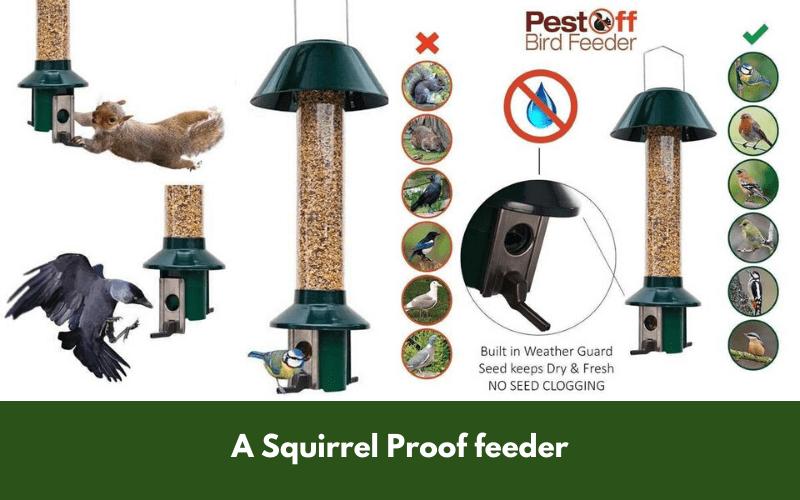 A Squirrel Proof feeder