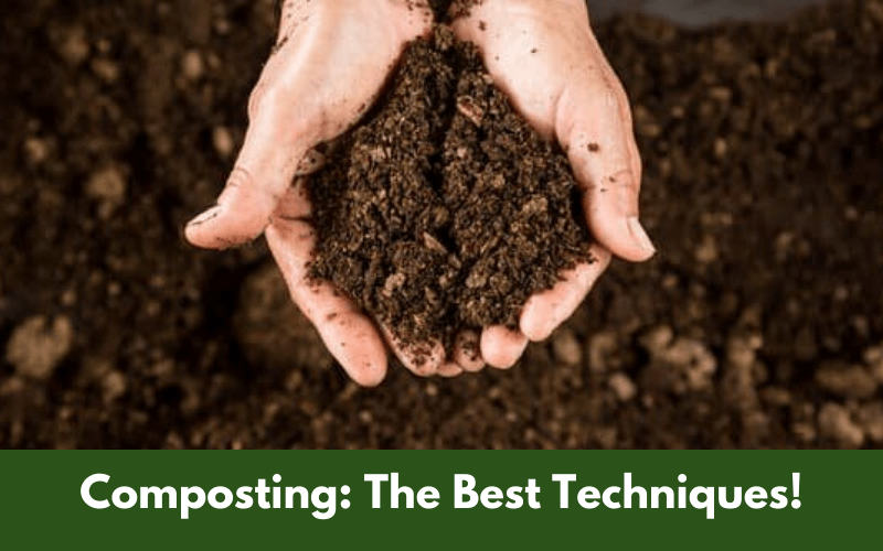 Composting The Best Techniques