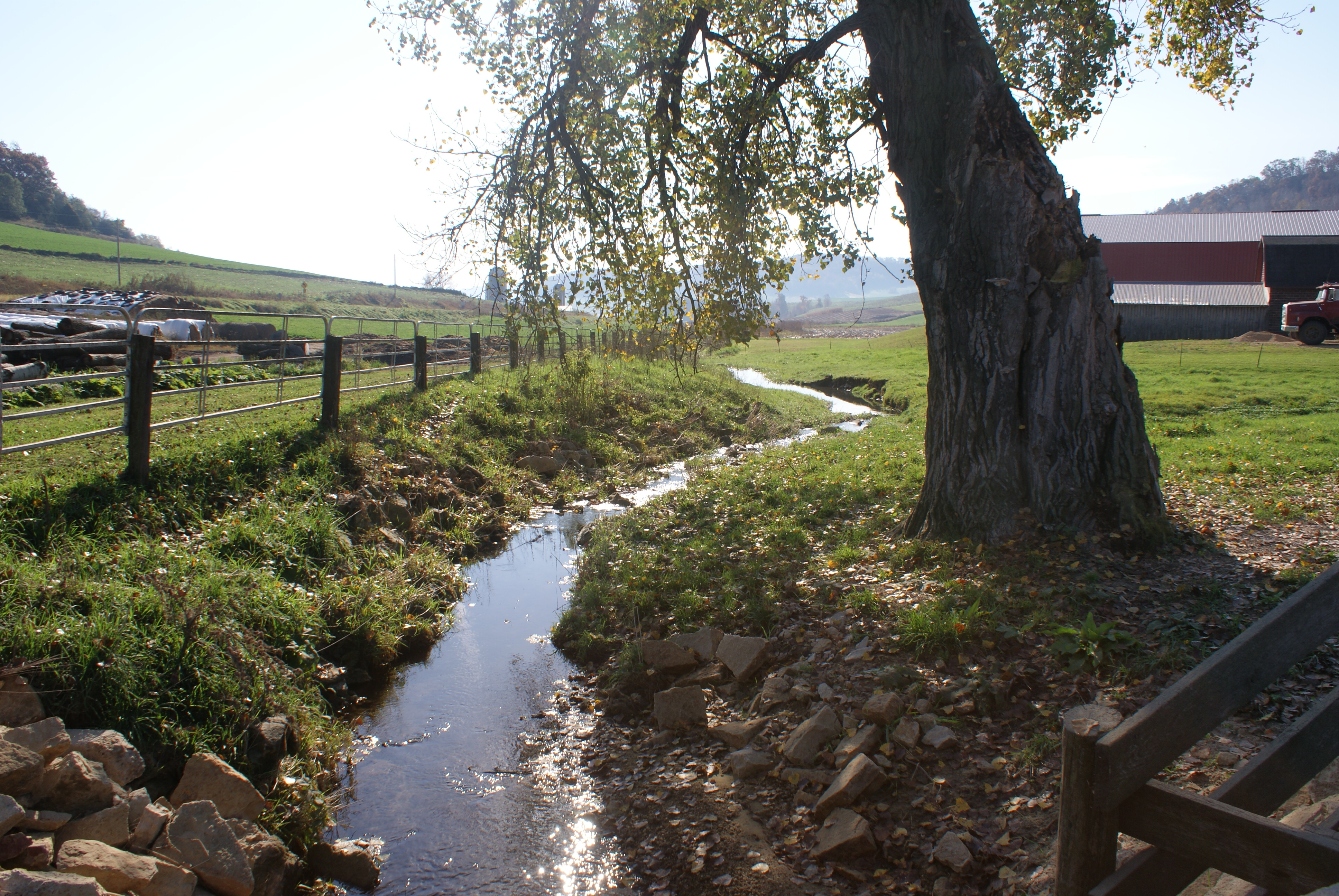 Nonpoint Source Pollution Prevention