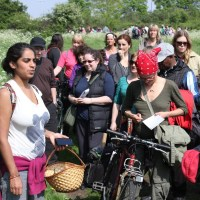 Late summer foraging walk on Walthamstow Marshes: Sun 24th Sep