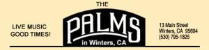 palmlogowinters