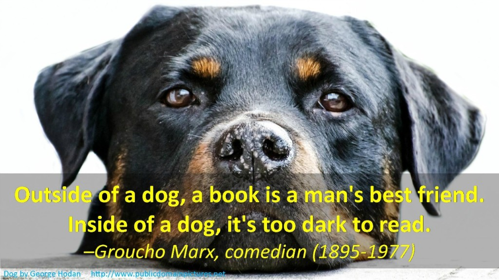 Dog Face with Groucho Marx quote about dogs and books .