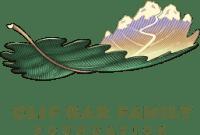 CBFF_logo