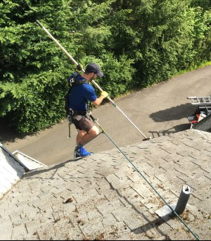 5-point harness- Fall Protection