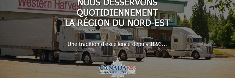 « Nous desservons quotidiennement la région du Nord-est »