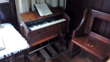 One of two organs