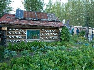 Wiseman-Alaska-FWS-Public-Domain-image