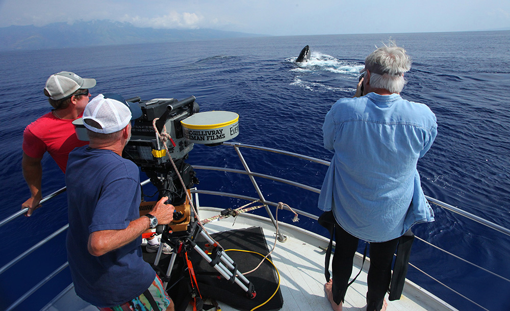 Director Greg MacGillivray films humpbacks with an IMAX® camera in Maui with Robert Walker (left) and Dr. Jim Darling. Copyright 2014 MacGillivray Freeman Films and Pacific Life. Photographer: Barbara MacGillivray.