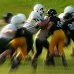 学習する組織:安心感とチームパフォーマンスの関係