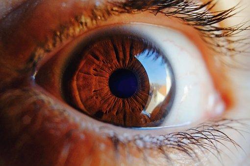盲視と半側空間無視における視覚的意識の違いとはなにか?