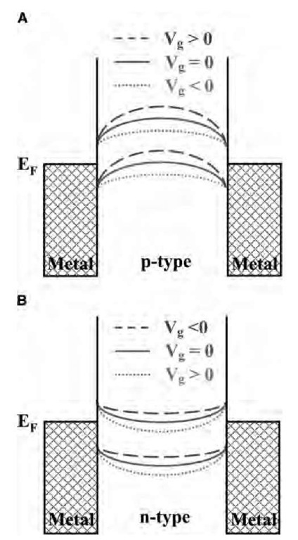 Schematic Band Diagram Of A Zno Nanowire Forming Schottky