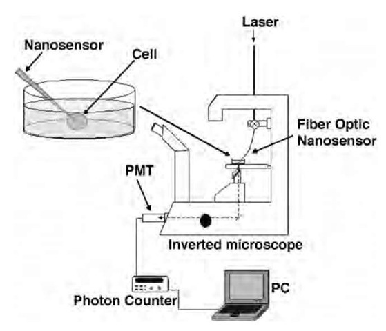 Optical Nanosensors and Nanobiosensors Part 1 (Nanotechnology)