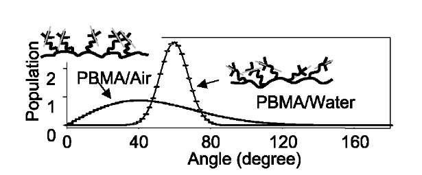 Sum Frequency Generation Vibrational Spectroscopy Studies