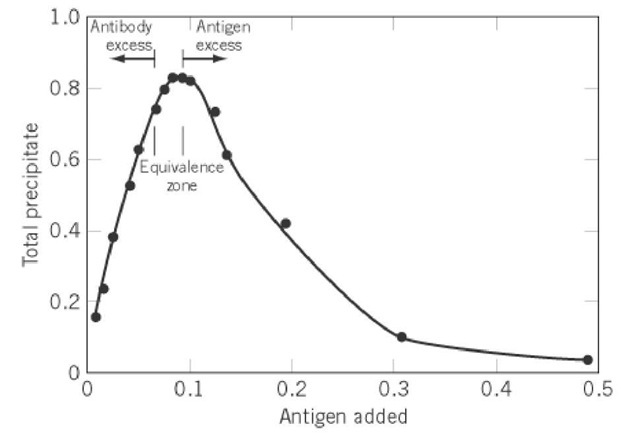Figure 1. Precipitin curve. An antibody is titrated with