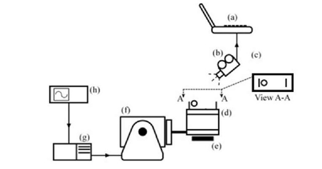 Energy Dissipation in Impact Absorber