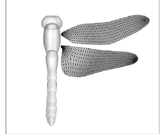 Study of Strain Energy in Deformed Insect Wings (Dynamic