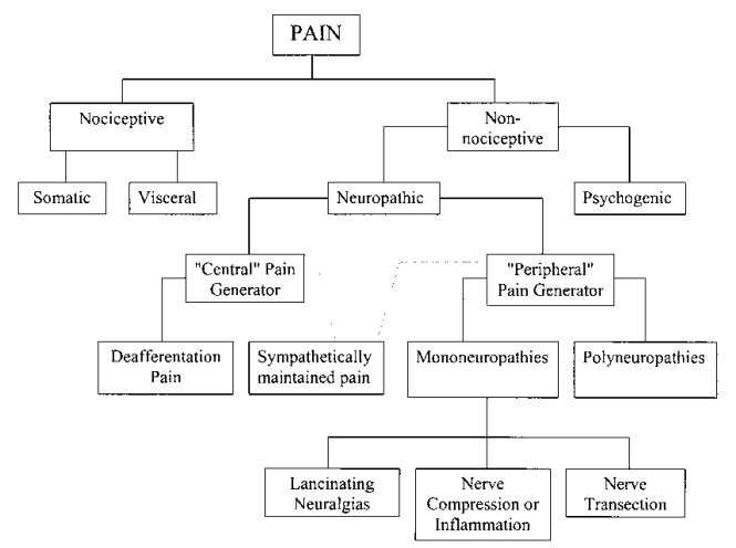 Image result for pain classification