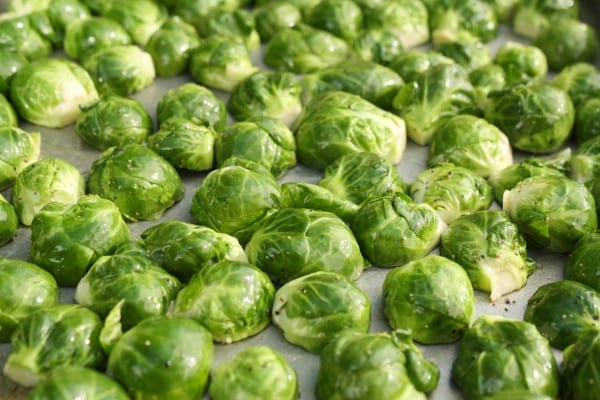 Brussels sprouts, coated in olive oil and ready to become roasted Brussels sprouts