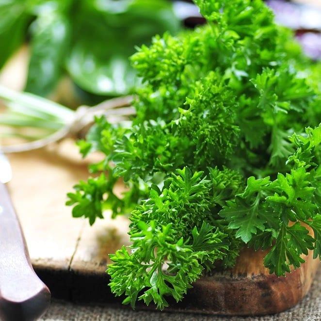 parsley for tabbouleh