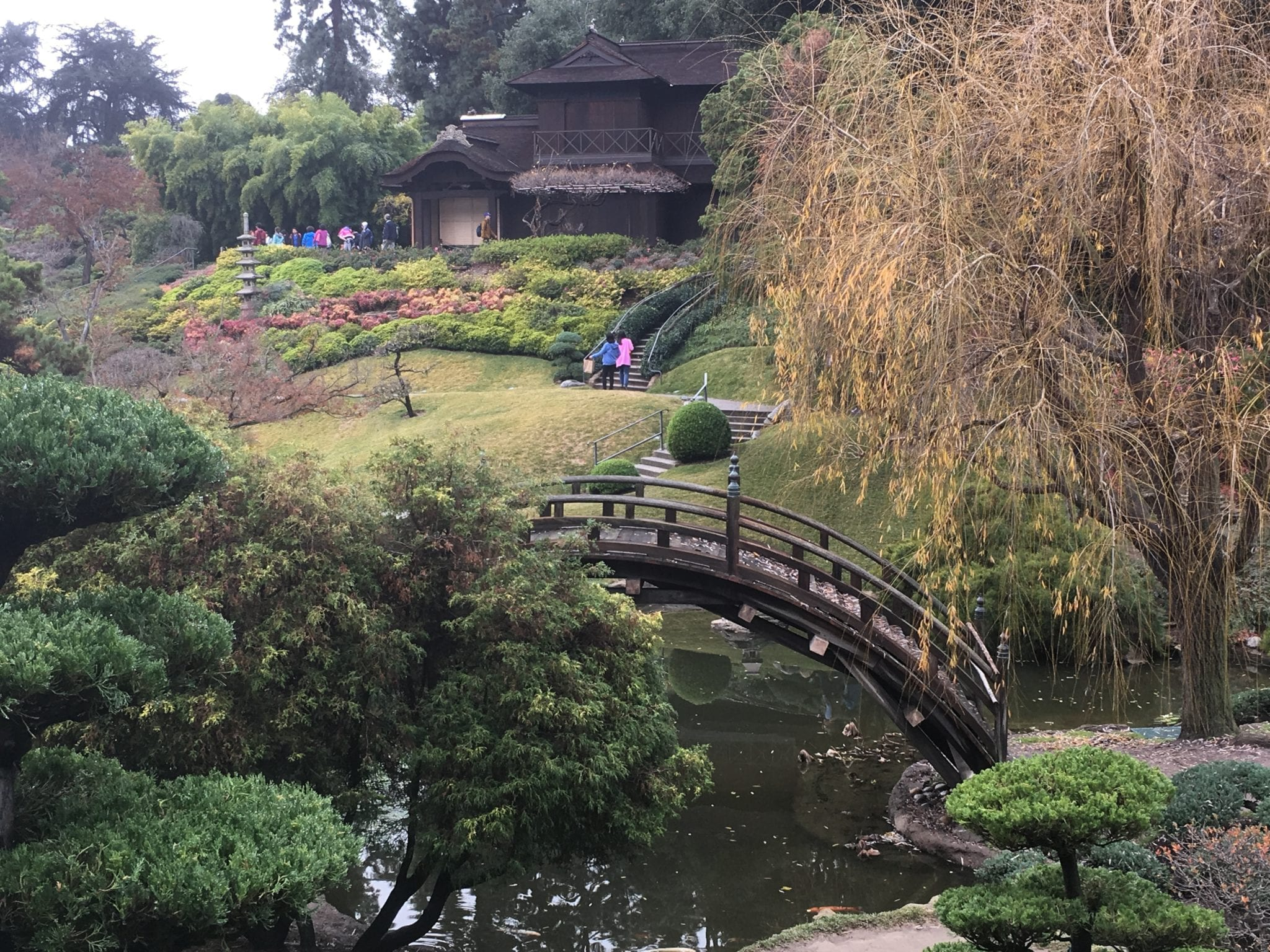 The Japanese Garden At The Huntington.The Huntington Library And Gardens In  Pasadena.
