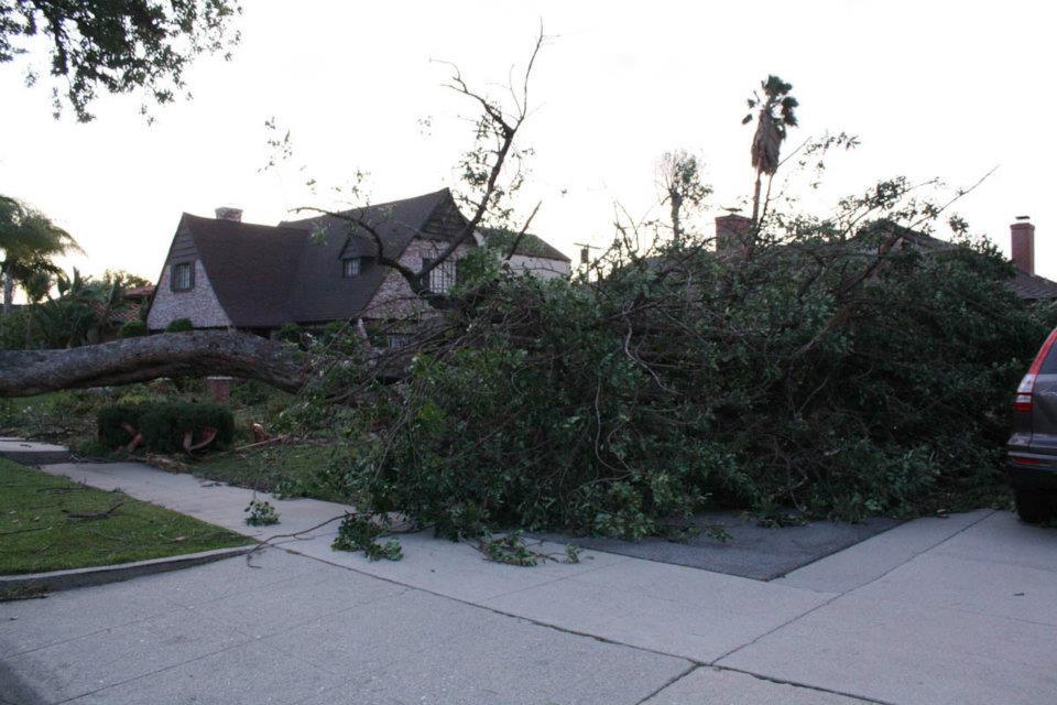 Pasadena windstorm
