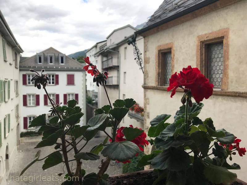 Stockalper palace window with geraniums