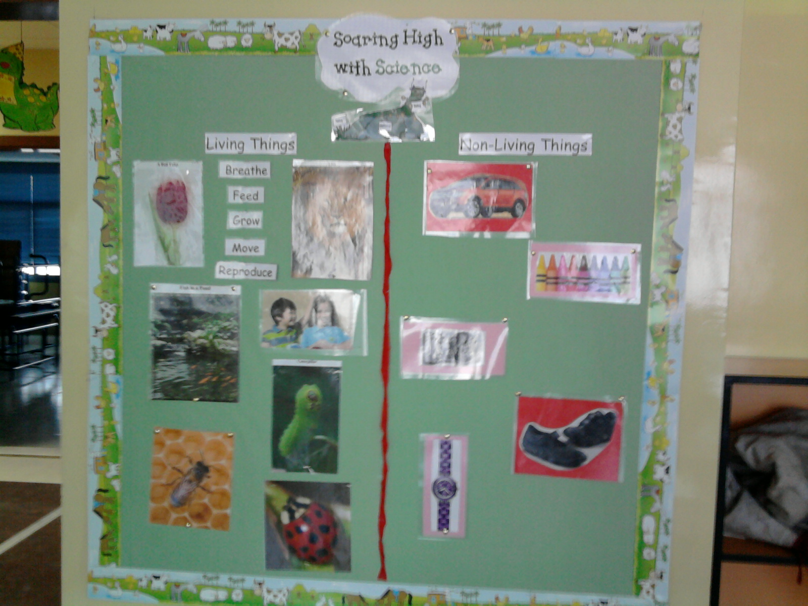 Living Things And Non Living Things Bulletin Board
