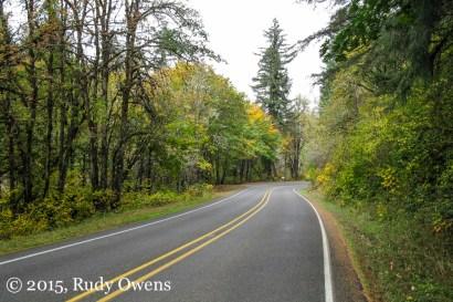 Crest Drive, Lane County, Oregon