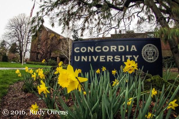 Spring in bloom at Concordia University