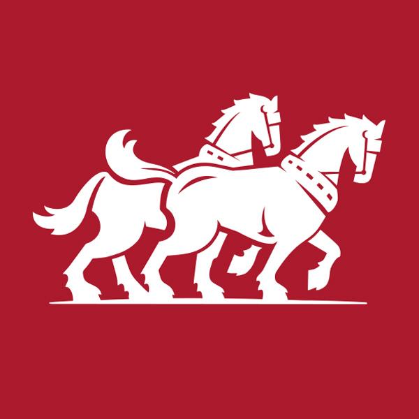 Carlton Draught Horses