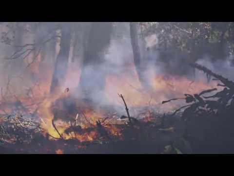 nasa and noaa take to the air to chase smoke - NASA and NOAA Take to the Air to Chase Smoke