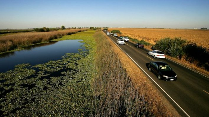 want to prevent californias looming flood disaster grow a marsh - Want to prevent California's looming flood disaster? Grow a marsh.