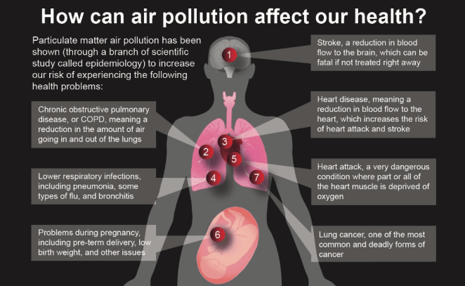 getting to the heart of the particulate matter 4 - Getting to the Heart of the (Particulate) Matter