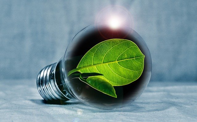 small things you can do to live green - Small Things You Can Do To Live Green