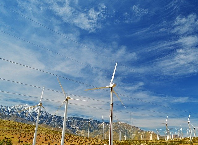 reducing tax bills by going green - Reducing Tax Bills By Going Green