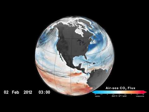 ocean surface carbon dioxide flux with surface winds - Ocean Surface Carbon Dioxide Flux with Surface Winds