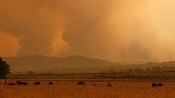 as wildfires worsen more california farms are deemed too risky to insure 1 - As wildfires worsen, more California farms are deemed too risky to insure