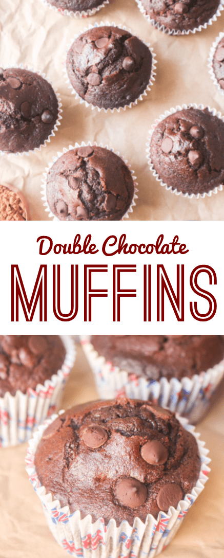 Double Chocolate Muffins   What Charlotte Baked