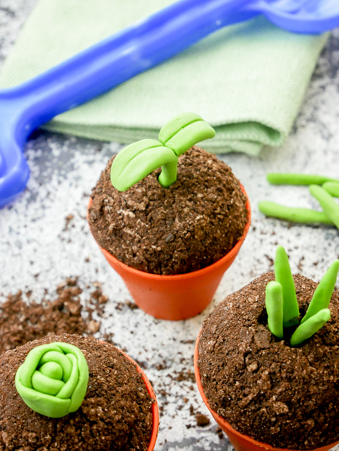 Seedling Cupcakes (in Plant Pots) recipe   What Charlotte Baked