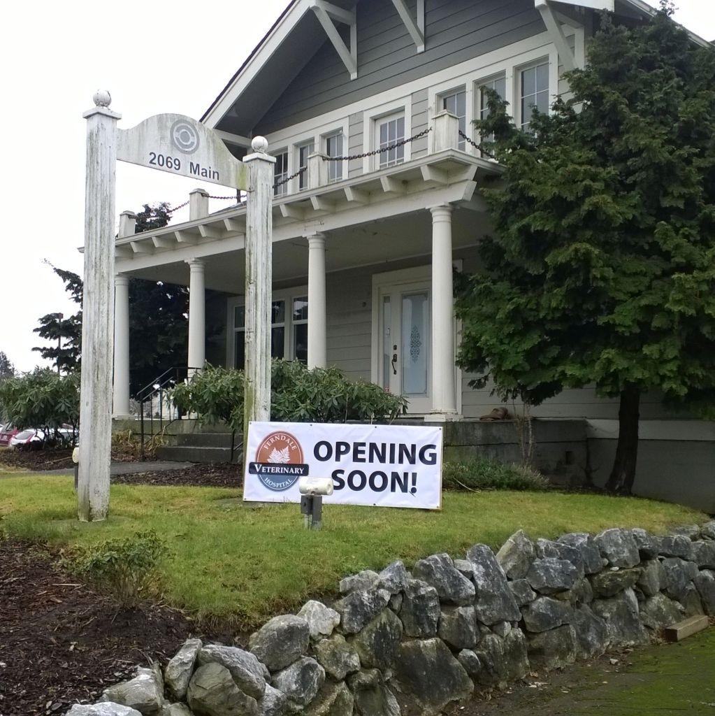 ferndale veterinary hospital opening soon