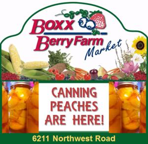 boxx berry farm canning peaches 300x