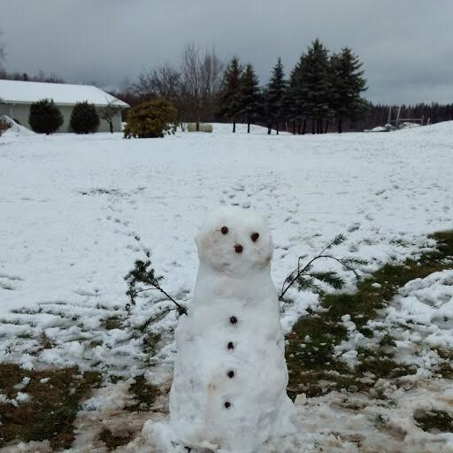 morning snow snowman thornton rd pic Patty Cusson Davis via fb