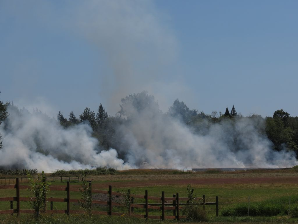 An outside fire between Bay and Grandview Roads, east of Blaine Road 2017-07-14