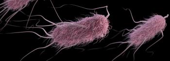 e coli virus - src centers for disease control and prevention