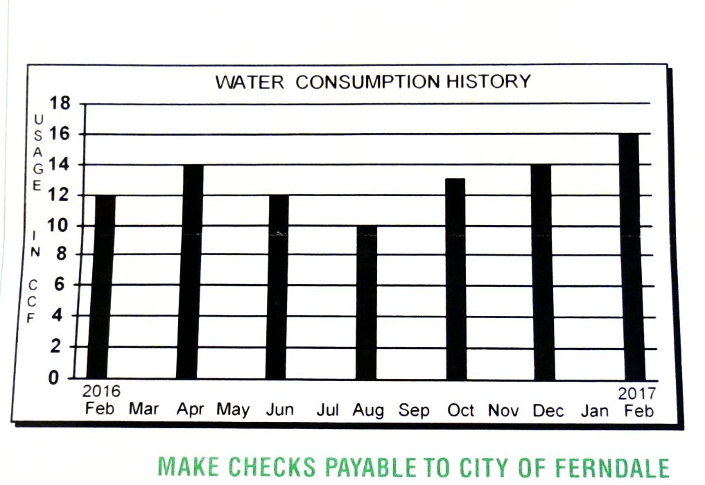 Snippet of a City of Ferndale utility invoice (March 15, 2017). Photo: My Ferndale News